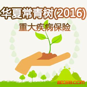 華夏人壽保險——華夏常青樹重大疾病保險(2016)