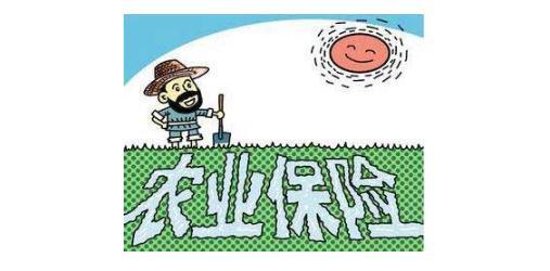农业保险来为农业发展护航