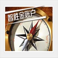 中国人民人寿保险——智胜金两全保险(万能型)