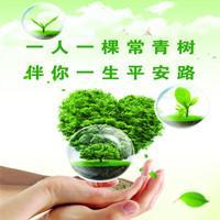 华夏人寿保险——常青树健康保障计划