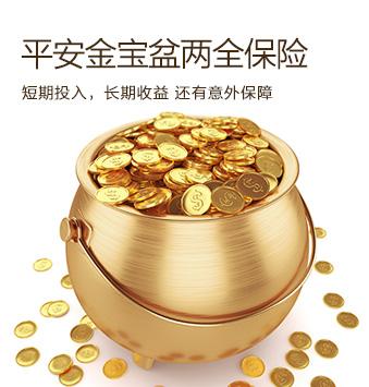 平安人寿保险——平安金宝盆两全保险(分红型,Ⅱ)