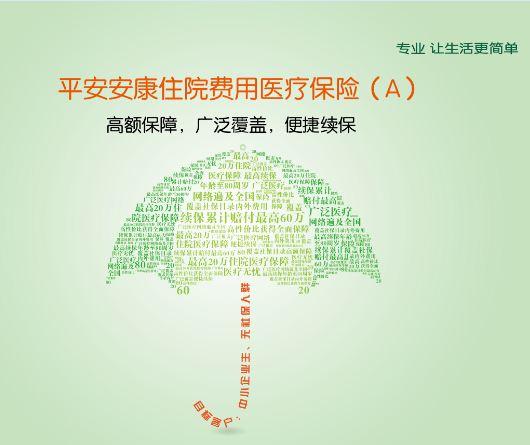 [中国平安]平安人寿保险——平安安康住院费用医疗保险(A)