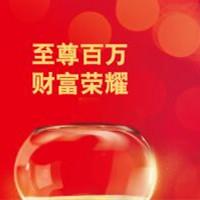 华泰人寿保险——百万财富至尊版保险产品计划