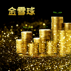 中信保誠人壽——中信保誠「金雪球」終身壽險(分紅型)