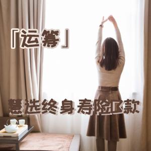 中信保诚人寿——中信保诚「运筹」慧选终身寿险B款(投资连结型)