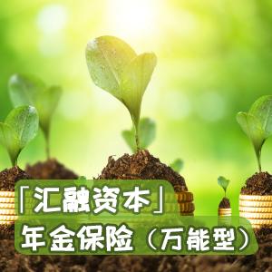 中信保诚人寿——信诚「汇融资本」年金保险(万能型)