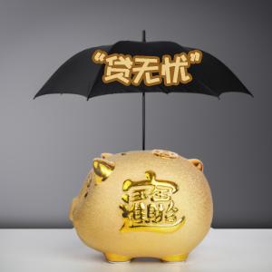 """太平財產保險——""""貸無憂""""財產保險"""