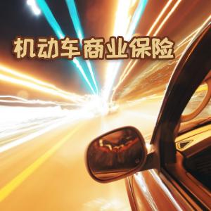 太平財產保險——機動車商業保險