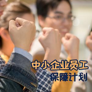 君龙人寿保险——中小企业员工保障计划