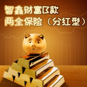 英大人壽——智鑫財富B款兩全保險(分紅型)