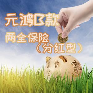 英大人壽——元鴻B款兩全保險(分紅型)