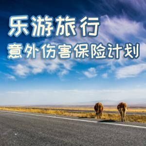 中意人寿——乐游旅行意外伤害保险计划