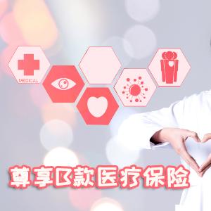 泰康人寿——健康尊享B款医疗保险