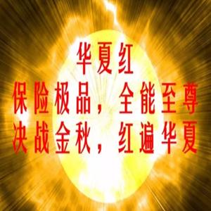 [泛华]《华夏红》年金保险